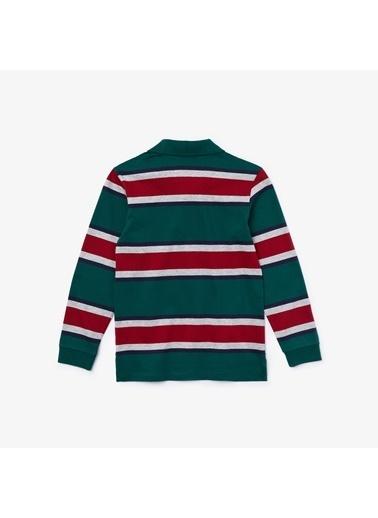Lacoste Erkek Çocuk Blok Desenli Sweatshirt DJ0281.1CK Renkli